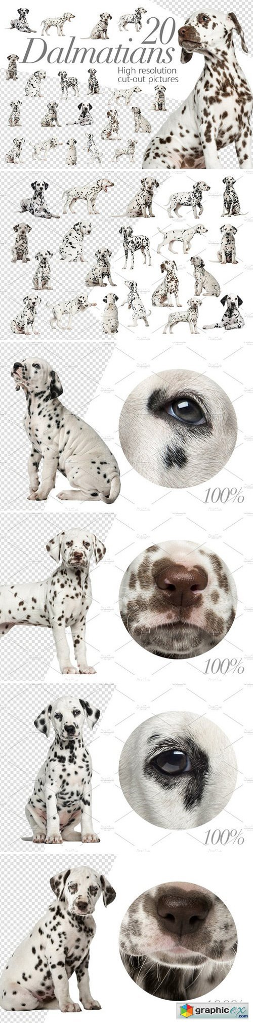 20 Dalmatians - Cut-out Pictures