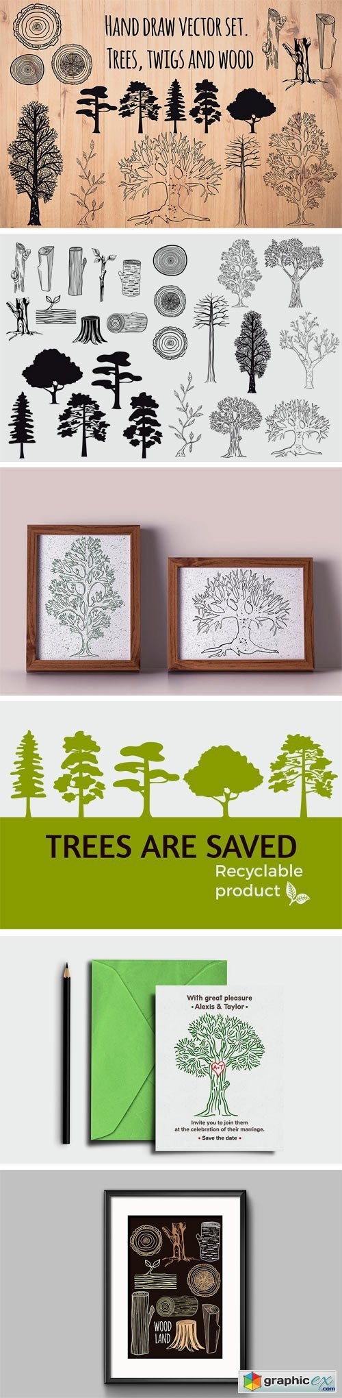 Set of Hand Drawn Trees and Wood