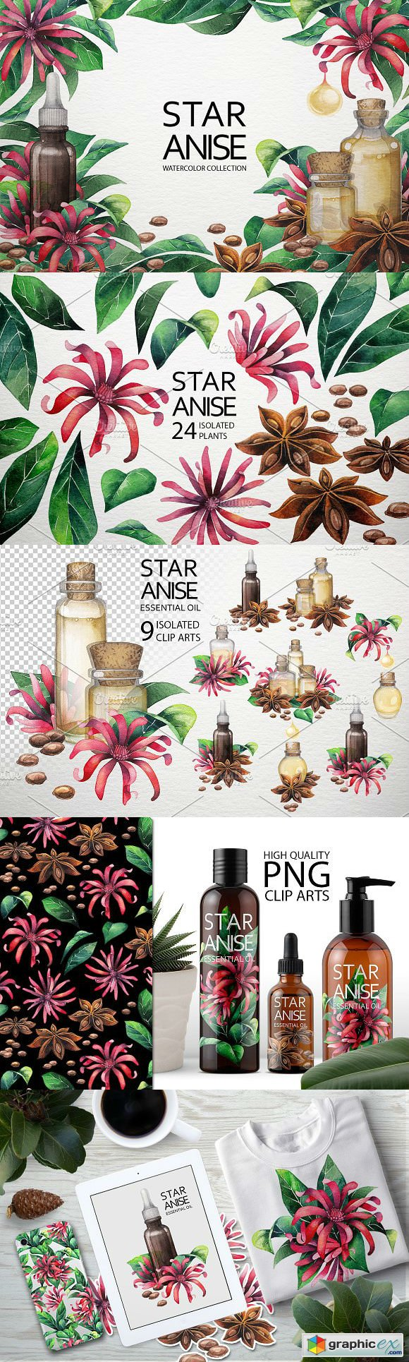 Watercolor Star Anise collection