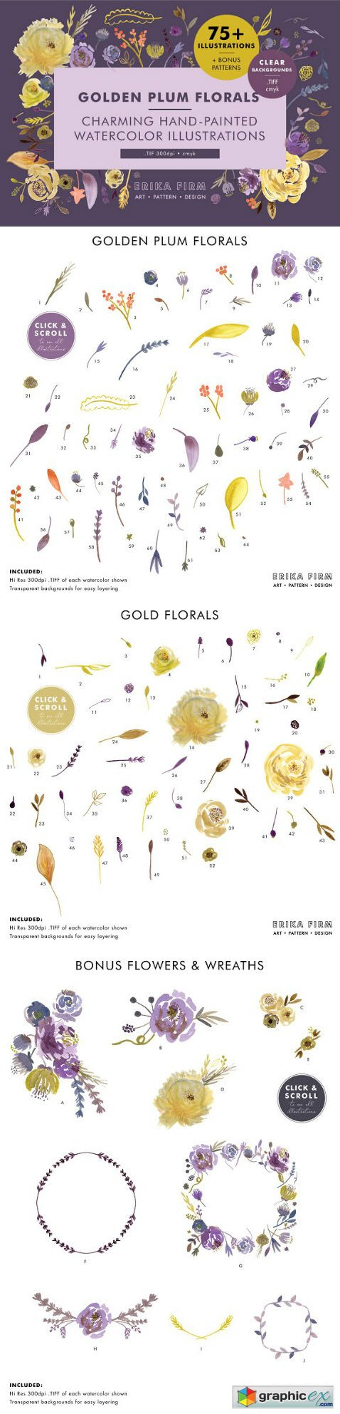 Golden Plum Floral Watercolors