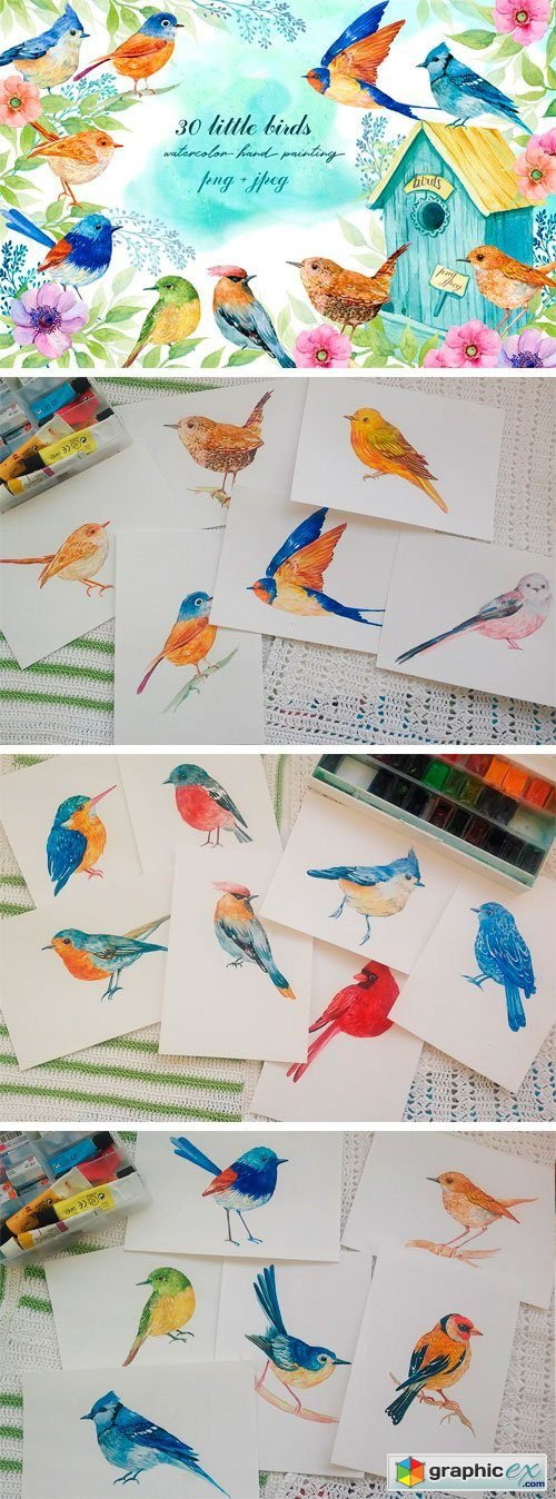 30 Little Birds. Watercolor