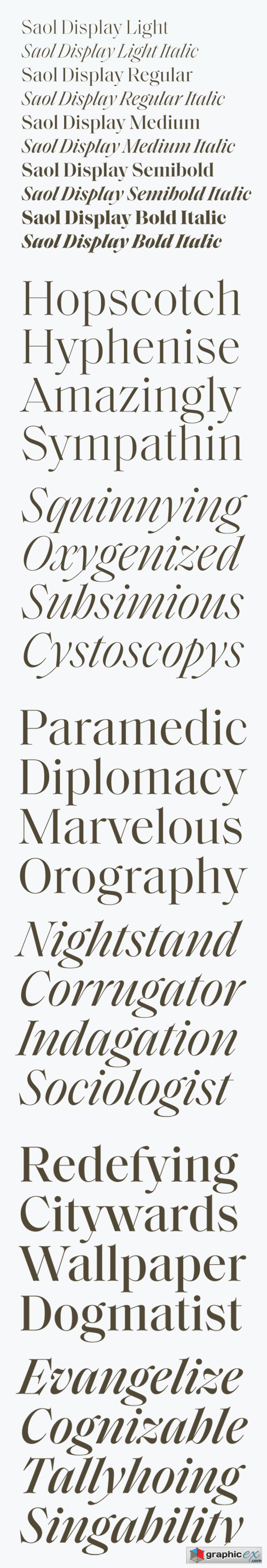 Saol Display Font Family » Free Download Vector Stock Image