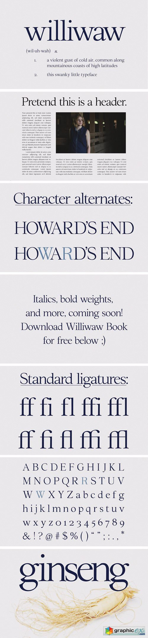Williwaw Book Typeface