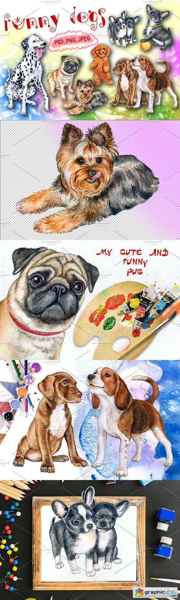 Funny dogs Watercolor