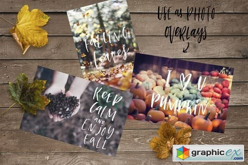 Autumn overlays