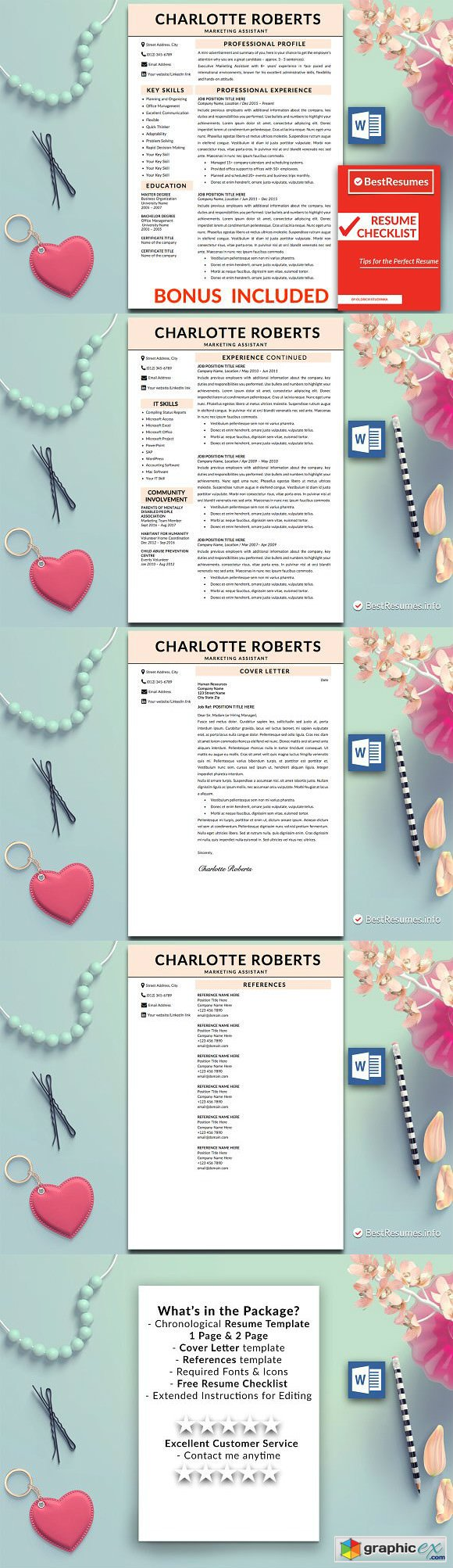 Professional Resume Template Word 2219741