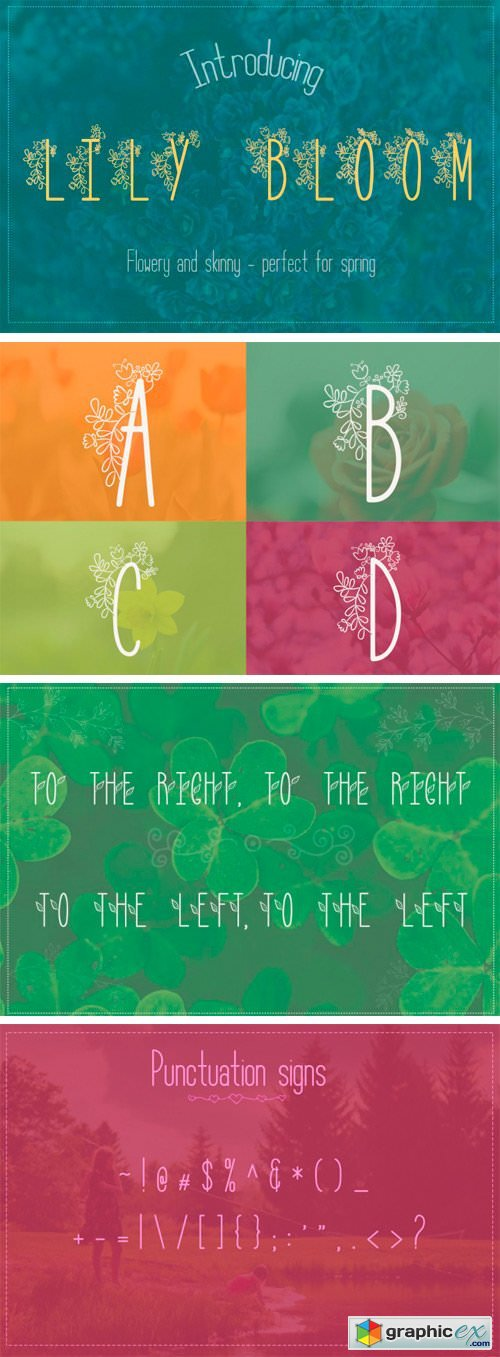 Thehungryjpeg - Lily Bloom Flowery Font with 4 Styles 65403
