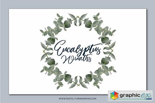 Eucalyptus Branches & Wreath ClipArt
