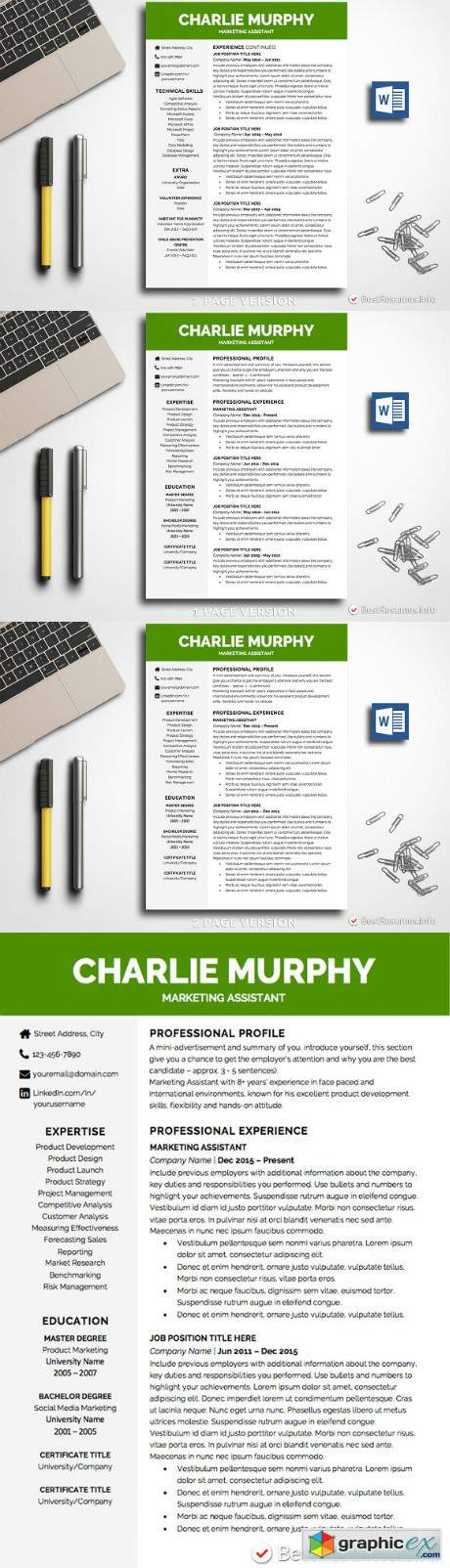 Professional Resume Template Word 2335664