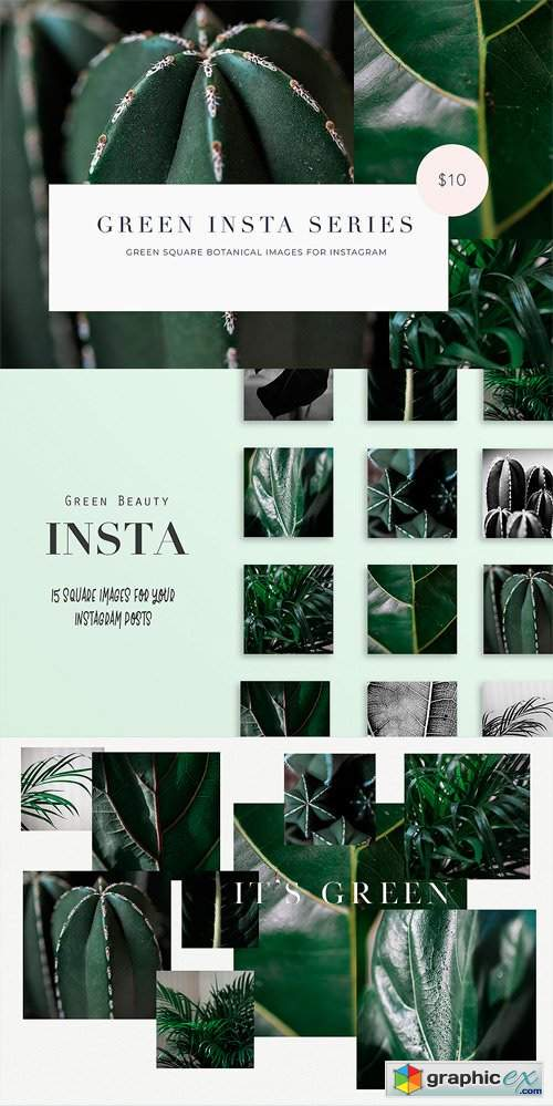 15 Green Plant Insta Square Photos