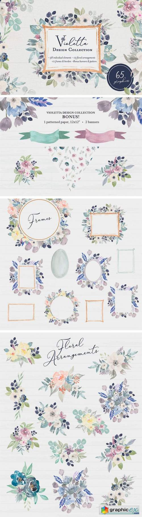 Violetta Flower Clipart and Frames