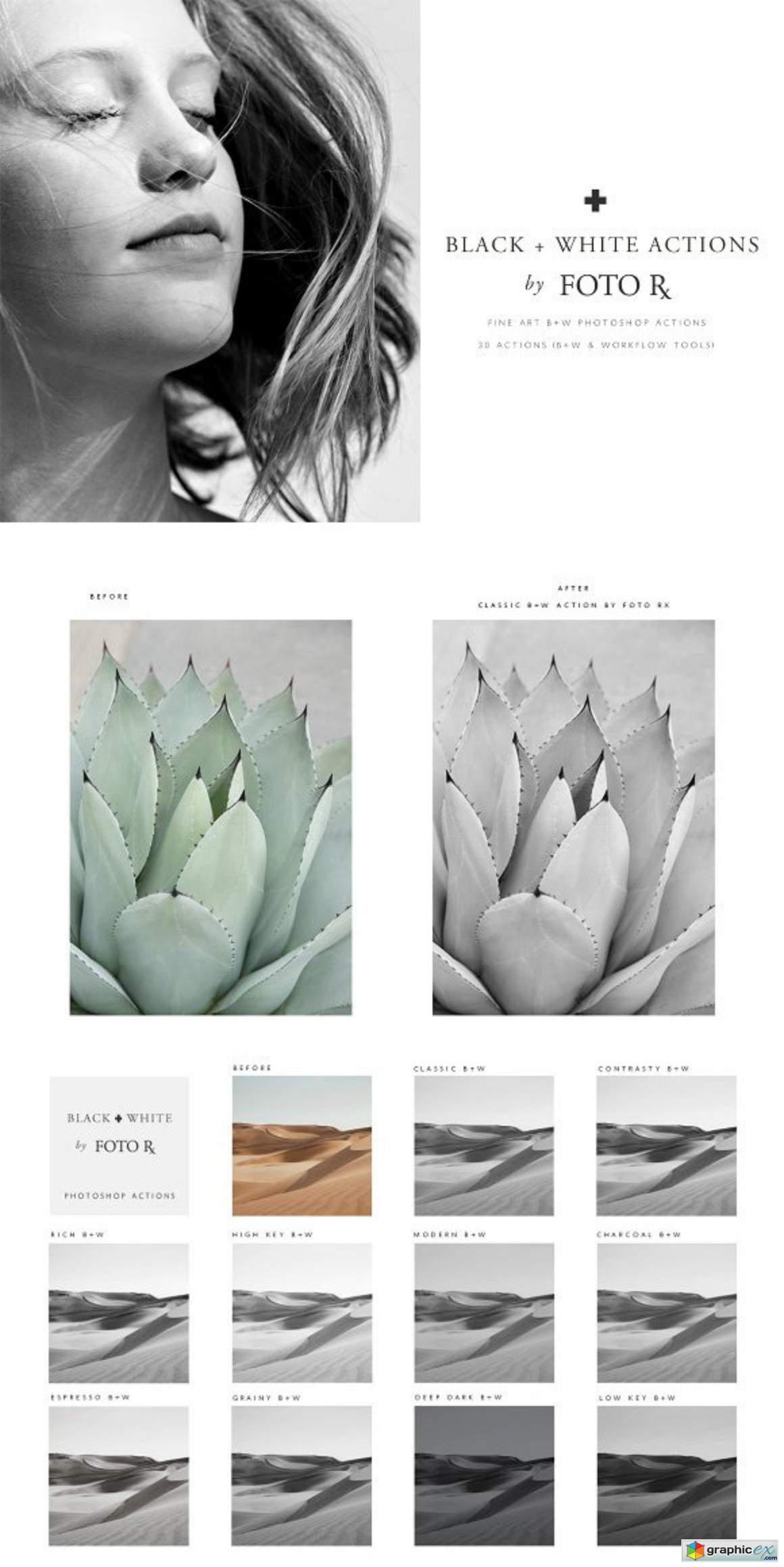 Fine art black white ps actions free download vector