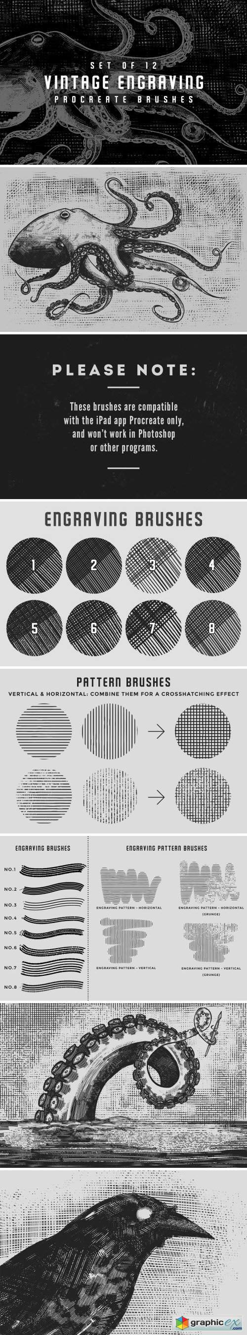 Vintage engraving Procreate brushes
