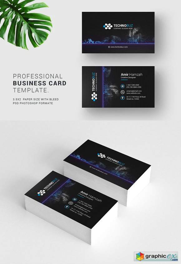 Business Cards 2474249