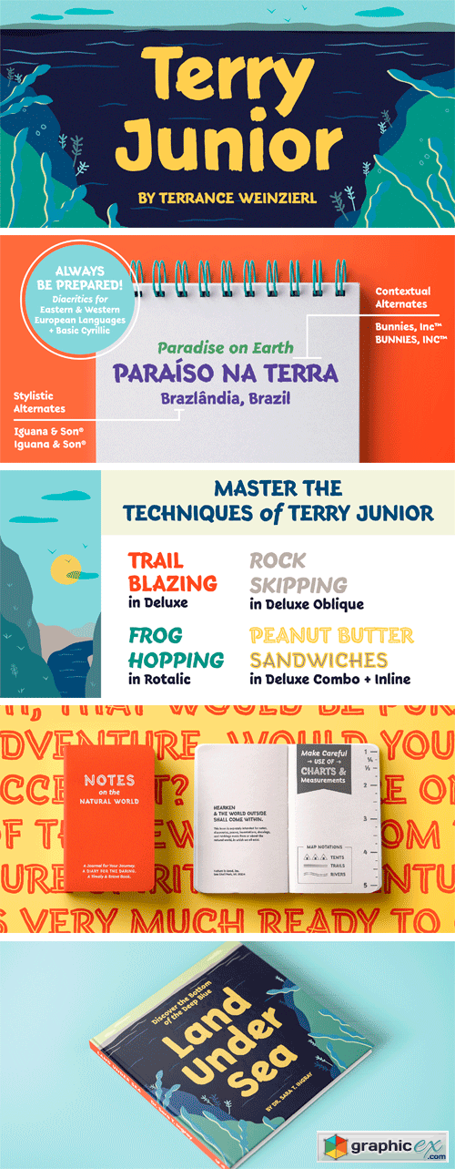 Terry Junior Font Family
