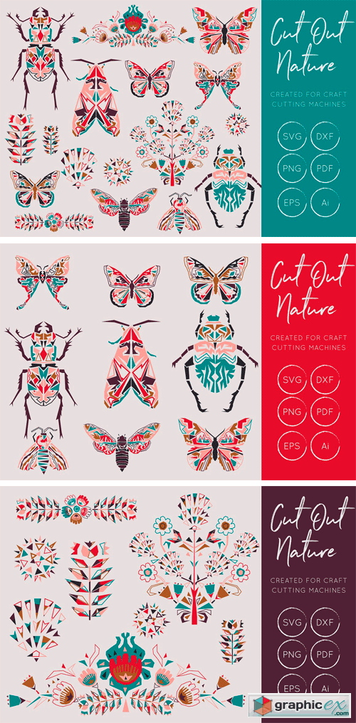 Butterflies and Beetles SVG Bundle