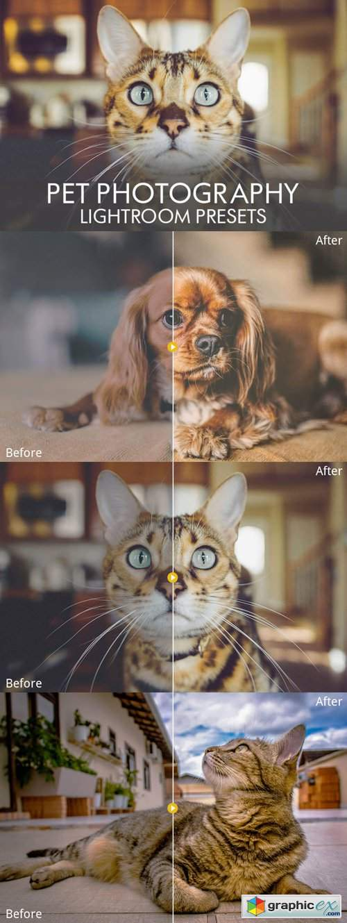18 Pet Photography Lightroom Presets [JPEG/RAW]