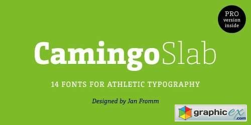 Camingo Slab Font Family - 28 Fonts