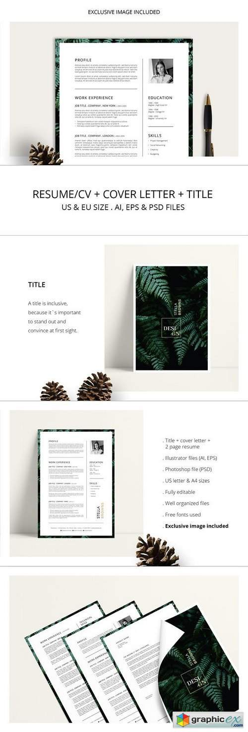 FERNS Resume/CV + Cover Letter