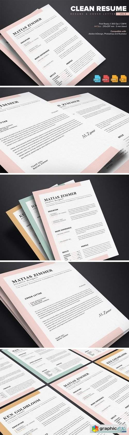 Clean Resume Template Vol.5