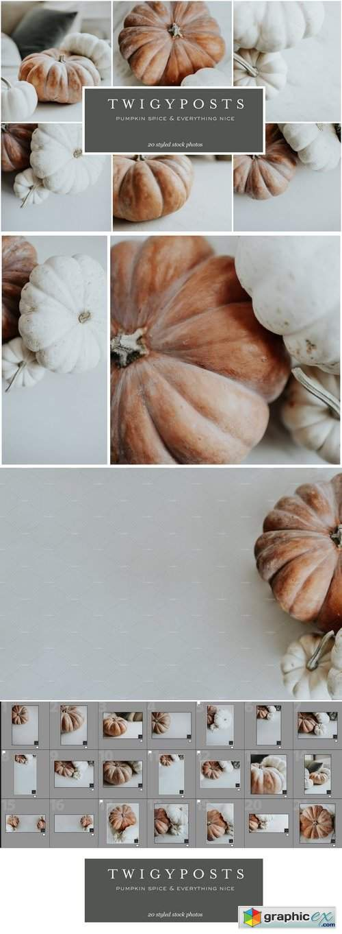 Pumpkin Spice Stock Photo Bundle