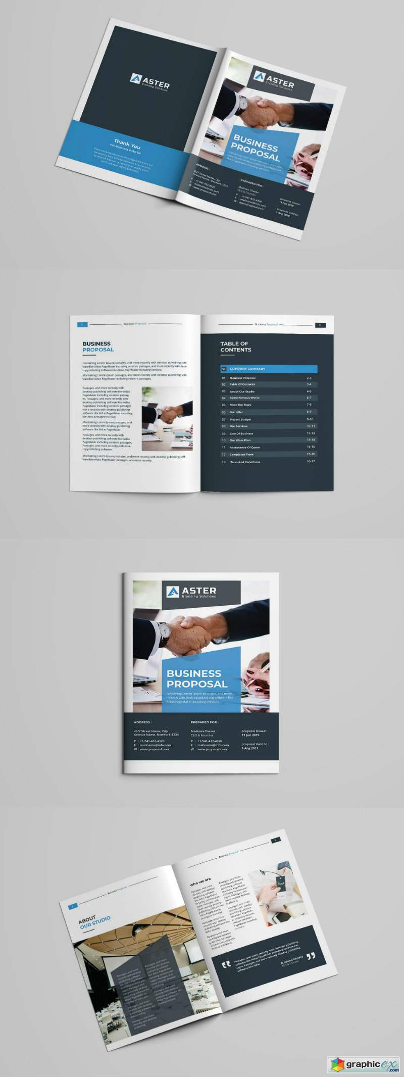 Business Proposal Template 2970998