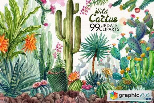 Watercolor Cactuses