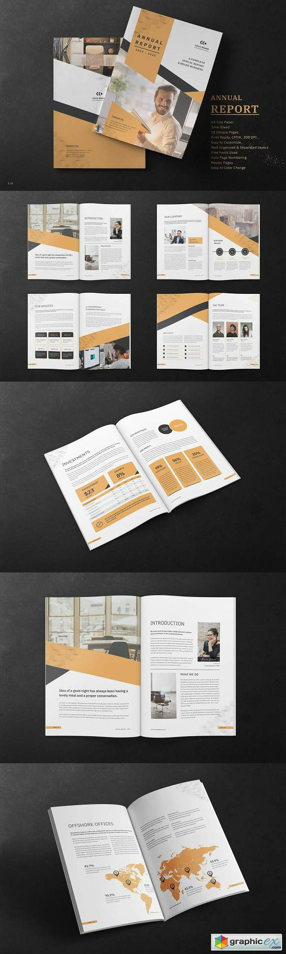 Annual Report Template 3078063