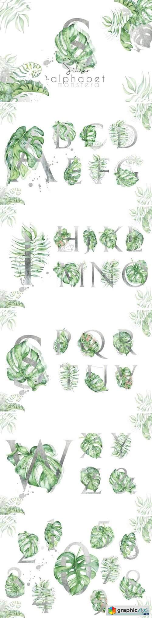 Silver Monstera - tropical alphabet