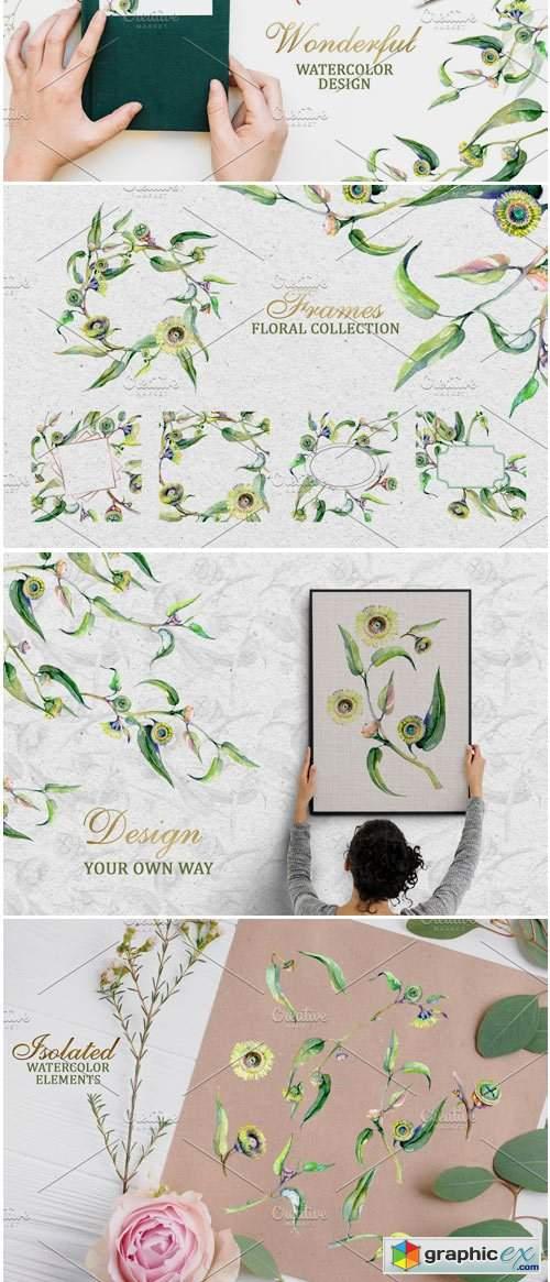 Eucalyptus Green Watercolor PNG