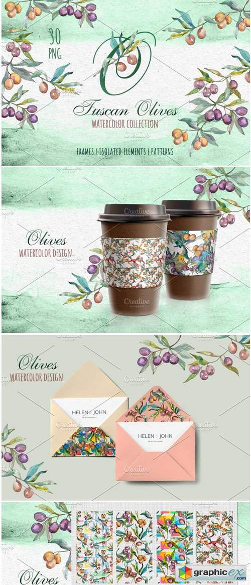 Tuscan Olives Green Watercolor PNG