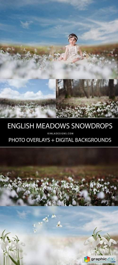 Snowdrops Photo Overlays