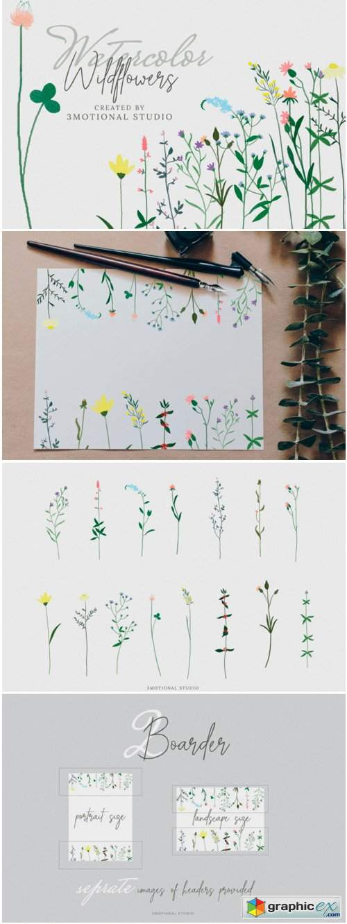 Watercolor Wildflowers High Res Png