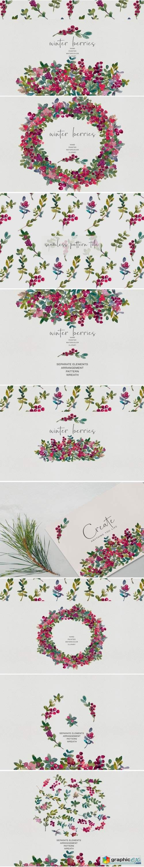 Watercolor Winter Berry Clipart - Winter
