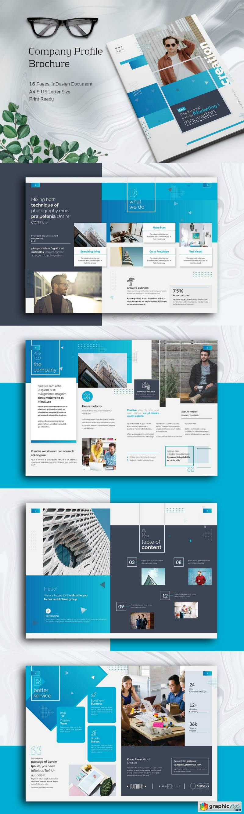 Company Profile Brochure 3907993