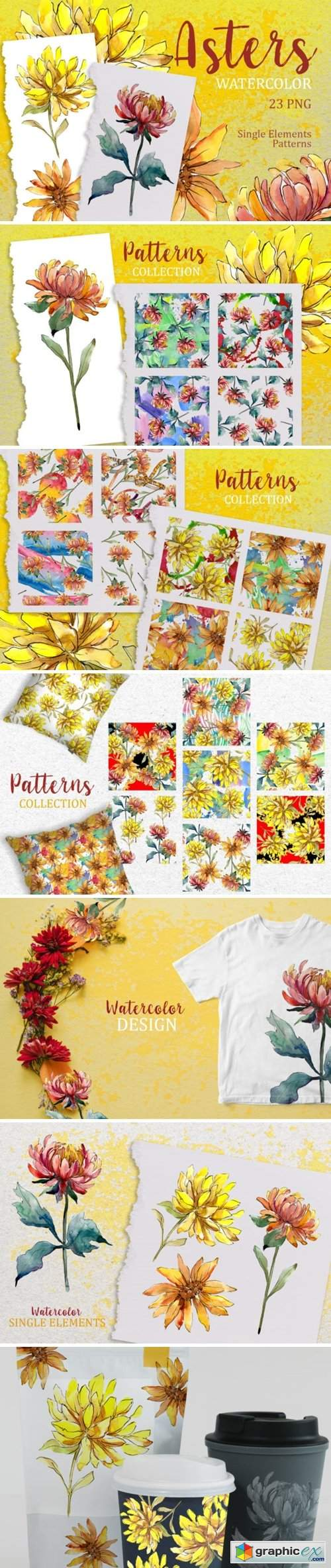 Yellow Watercolor Asters PNG Set