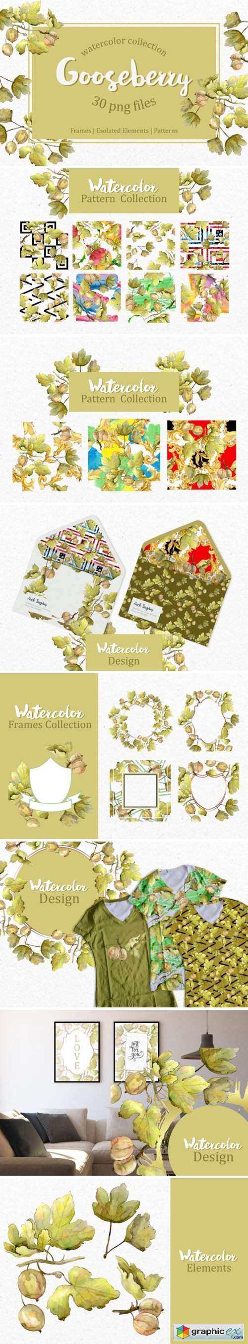 Watercolor Gooseberry Collection