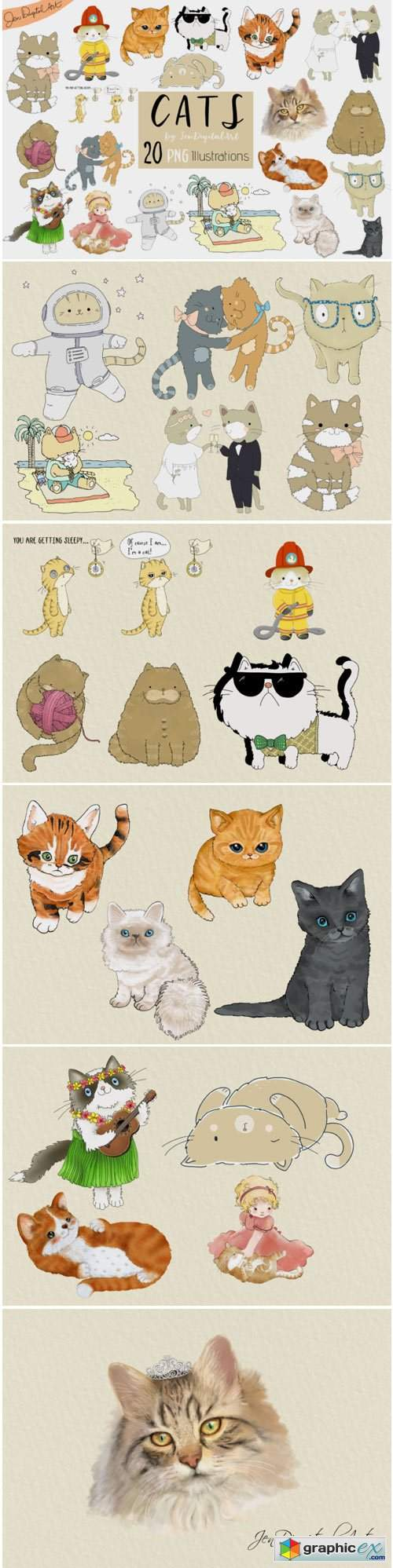 Cats 20 Assorted Illustrations