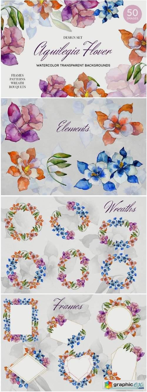 Aquilegia Flowers Velvet Season