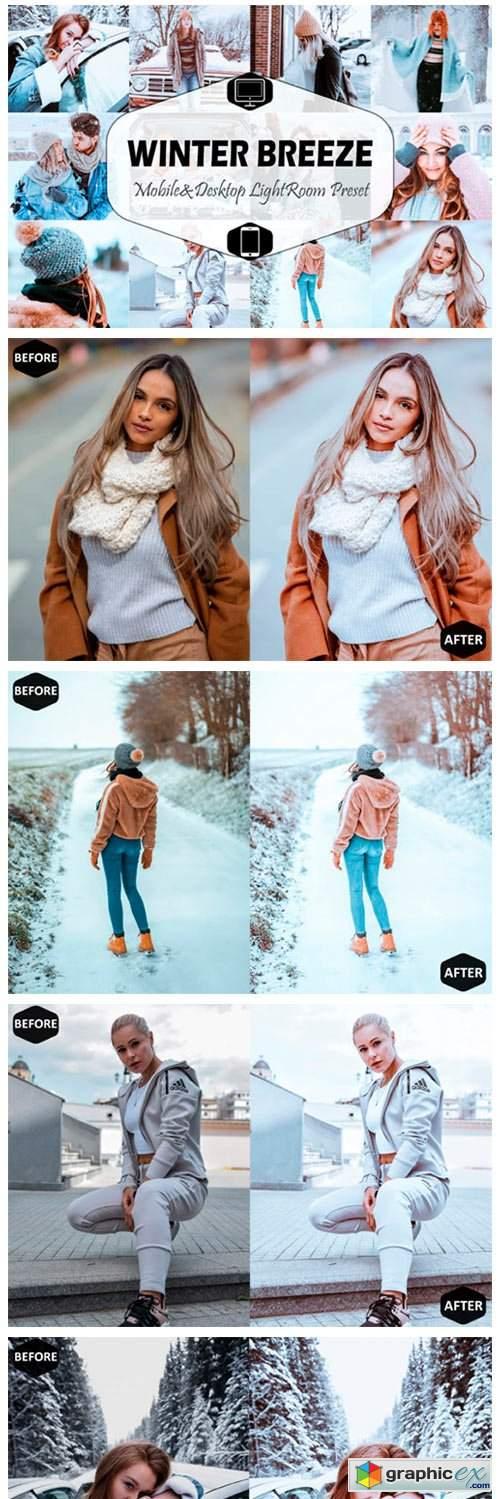 Winter Breeze Mobile & Desktop Lightroom