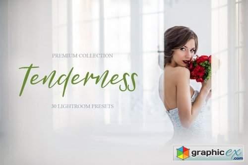 Tenderness Presets for Lightroom
