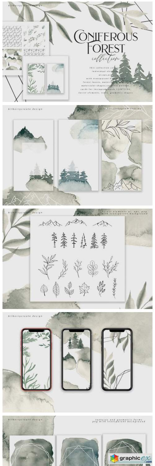 Coniferous Forest Art Collection