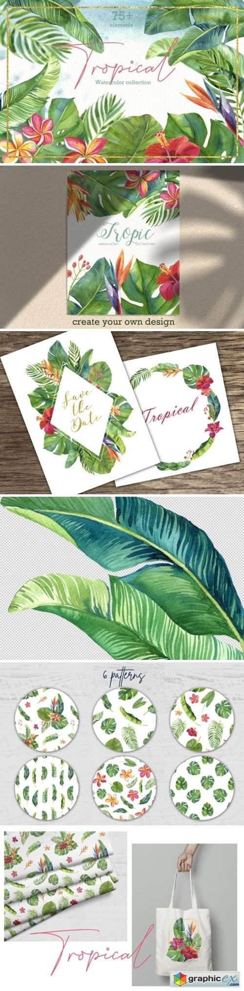 Tropic Leaves & Flowers Watercolor Set