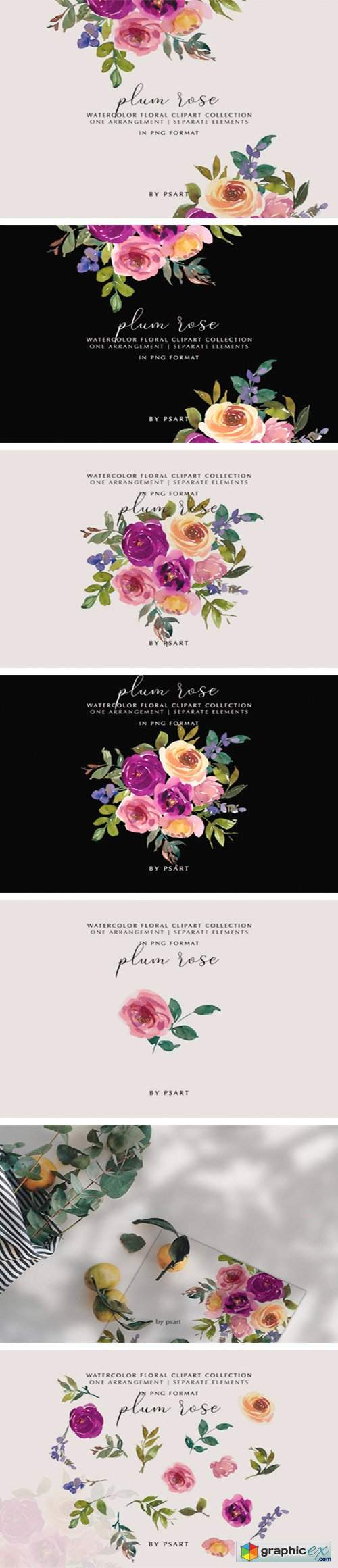 Plum and Blush Watercolor Floral Clipart