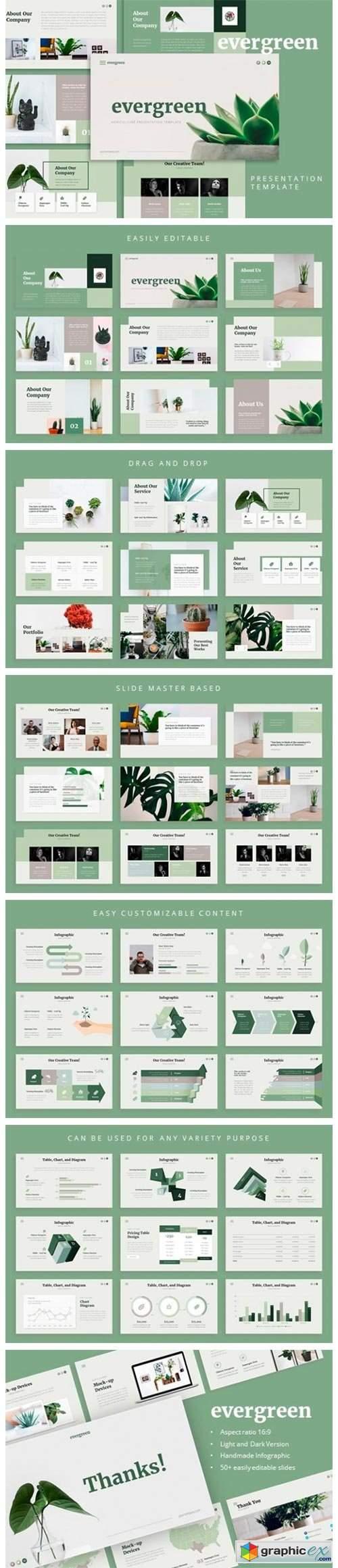 Evergreen PowerPoint Template