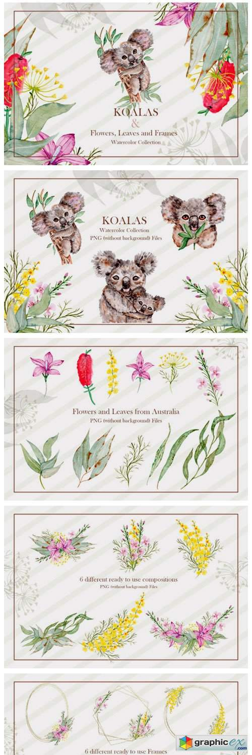 Watercolor Koala Collection