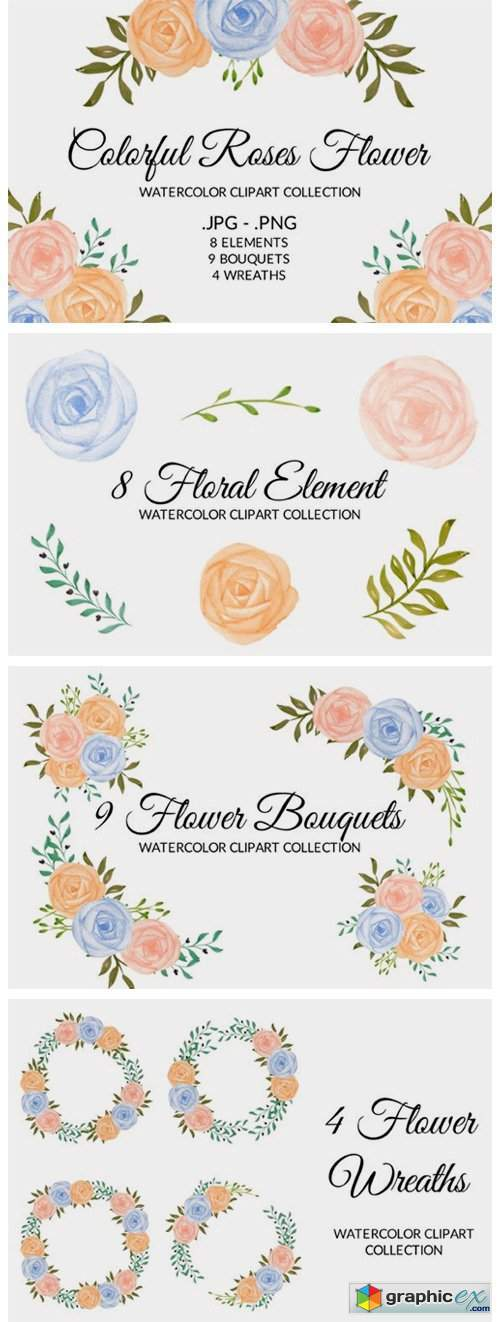 Colorful Rose Flower Watercolor Clipart