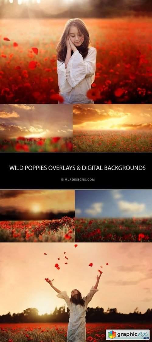 Kimla Designs - Wild Poppies Photo Overlays