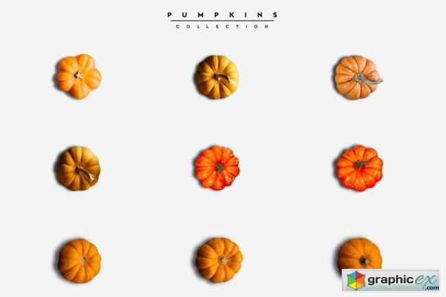 Autumn Scene Creator #01