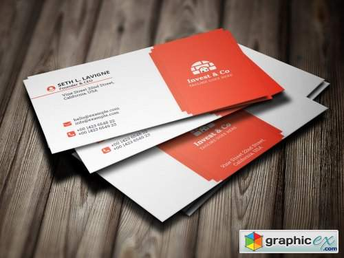 Real Estate Business Card 4536768